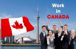 Visa việc làm cho Sinh viên sau tốt nghiệp tại Canada